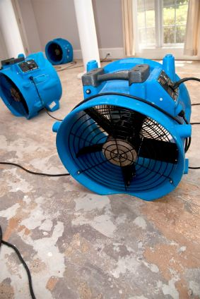 A Friendly Carpet Cleaning & Restoration LLC's drying fans in water damaged house.