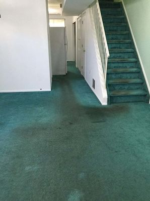 Before & After Carpet Cleaning in Staten Isalan, NY (2)