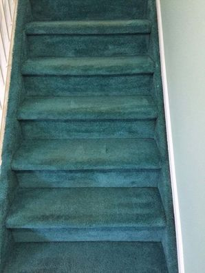 Before & After Carpet Cleaning in Staten Isalan, NY (3)