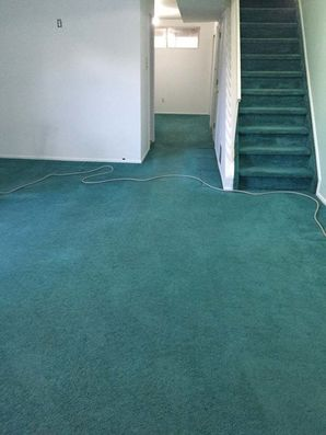 Before & After Carpet Cleaning in Staten Isalan, NY (4)