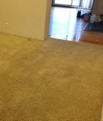 Before and After Carpet Cleaning - See What A Difference!