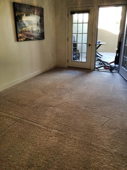 Carpet Cleaning Cambridge Crossing, NJ