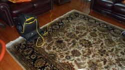 Drying after Oriental Rug Cleaning in Bayonne, NJ (1)